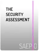 The Security Assessment