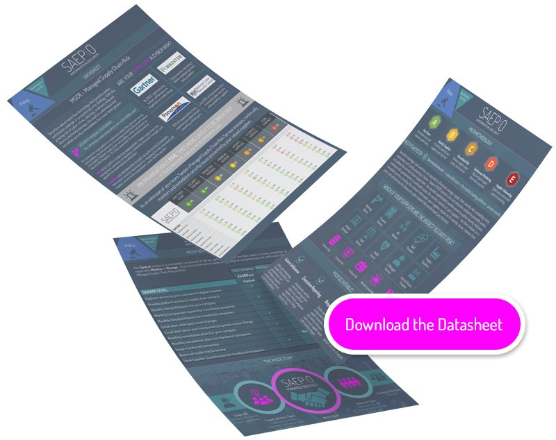 Managed Supply Chain Risk service datasheets